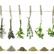 COMPLET – Cours de cuisine adulte « Dîner à l'Atelier » : Vendredi 30 juin de 18h à 22h (dîner inclus sur place) : Herbes aromatiques! (49€)