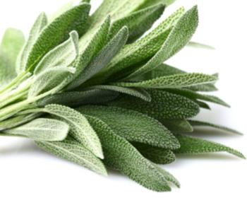 Marinade sauge-citron (pour légumes)