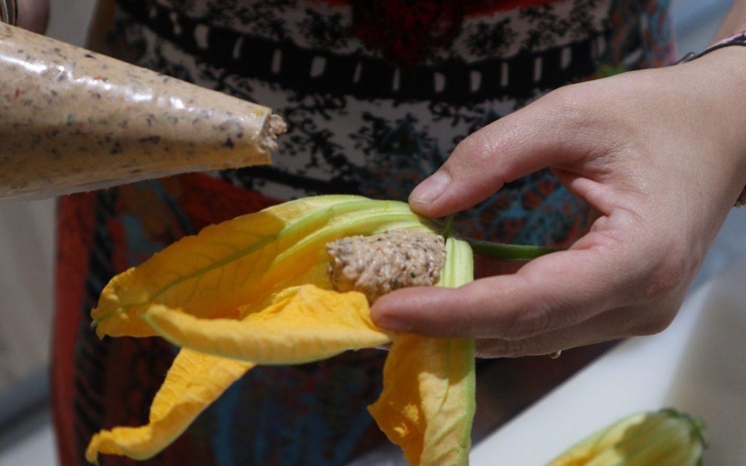 Recette de fleurs de courgettes farcies 